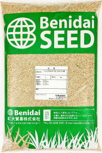 ペレニアルライグラス 品種名:コンフェティ3 1kg  紅大貿易 【ウィンターオーバーシード用品種】芝の種