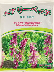【送料無料】ヘアリーベッチ種子 1kg