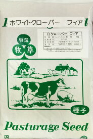 ホワイトクローバー種子 フィア 1kg送料無料