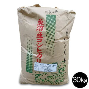 新米 令和3年産 南魚沼産こしひかり玄米30kg 産地直送 送料無料 玄米 こめ 魚沼産コシヒカリ