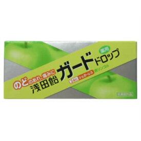 【送料無料1000円 ポッキリ】【浅田飴】浅田飴 ガードドロップ 青リンゴ味 24粒×2個セット