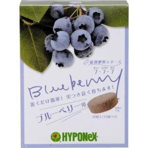 【送料込・まとめ買い×6個セット】ハイポネックス 錠剤肥料シリーズ ブルーベリー用 30錠入り 鉢の上に置くだけのブルーベリー専用の肥料