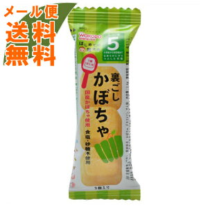 【メール便送料無料】和光堂 手作り応援 はじめての離乳食 裏ごしかぼちゃ 5か月頃から 2.4g 1個