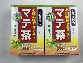 【×2個セット送料込み】山本漢方製薬の100%マテ茶 2.5g×20バッグ (4979654026246)