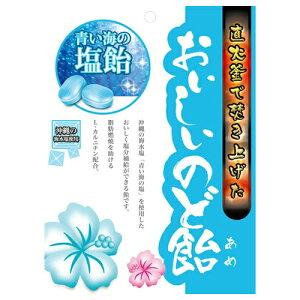 【送料無料1000円 ポッキリ】日進医療器 おいしいのど飴 青い海の塩飴 70g×3個セット