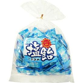【配送おまかせ送料込】【夏バテ防止・熱中症対策】おいしいのど飴 塩飴 210g 1個