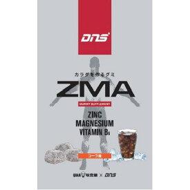 【送料無料・まとめ買い6個セット】UHA味覚糖 DNSグミ ZMA 29g