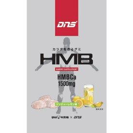 【送料無料・まとめ買い6個セット】UHA味覚糖 DNSグミ HMB 29g