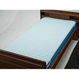 【送料無料】ウェルファン 洗えるベッドパット(ポリ)ブルー Sショート