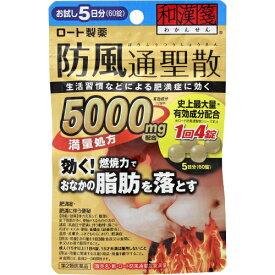 【第2類医薬品】和漢箋(わかんせん) 新ロート防風通聖散錠満量 60錠
