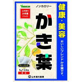 【送料無料1000円 ポッキリ】山本漢方製薬 かき葉 5g×24包×2個セット