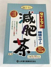 【送料無料1000円 ポッキリ】【山本漢方製薬】ダイエット減肥茶 5g×32包×2個セット