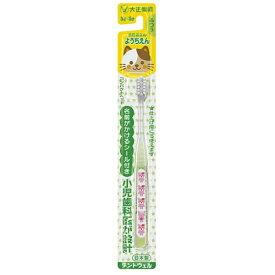 【×12本セット送料込】大正製薬 歯医者さん ようちえん ふつう 歯ブラシ