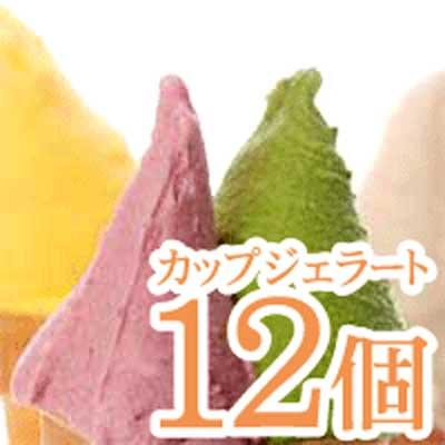 北海道5ッ星感動ジェラート12コチョイス【10P14Sep09】