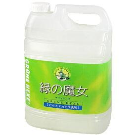 緑の魔女 キッチン 食器用洗剤 5L 【送料無料】【smtb-MS】【RCP】