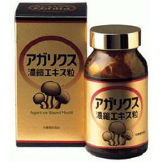 Agaricus blazei murill concentrated extract grain 360 grain