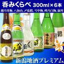 (希少セット)新潟銘酒 飲み比べセット 300mlx6本【越乃寒梅 雪中梅 峰乃白梅, 〆張鶴 八海山 緑川 日本酒 飲み比べ…
