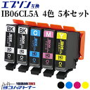【数量限定・特別提供品】 IB06CL5A エプソンプリンター用互換 IB06CL5A / IB06( メガネ )シリーズ 4色 5本セット (BK×2/C/M/Y) 対象機種:PX-S5010 【互