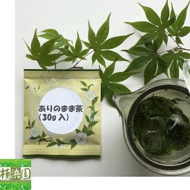 軽い 割れにくい 透明 中がよく見える クリアティーポット(ステンレスメッシュ 280ml(満水))と氷水出しに最適な横浜園セレクトの緑茶のセット 【ありのまま茶】
