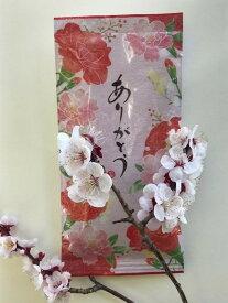 日本茶 静岡茶 牧之原産 ちょっとしたプレゼントに最適 【ありがとう(煎茶)100g】