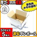 Takuhai50 white1 005