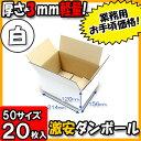Takuhai50 white1 020