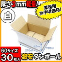 Takuhai60-white1-030