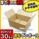Takuhai80 craft1 030