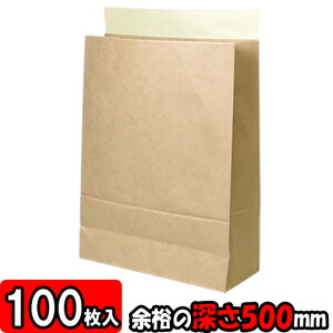 【あす楽】宅配袋 ビッグ1 100枚セット 【テープ付き 紙袋 発送用 宅急便 袋】【宅配袋セット】