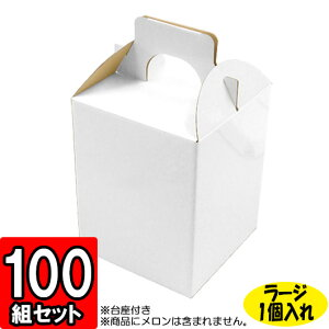 メロン箱 白つやあり ラージサイズ【1個入れ】【L】 100セット 【メロン用 メロンの箱 フルーツ用 フルーツギフト用 果物用 ギフトボックス 箱 メロン パッケージ フルーツ箱 果物箱 贈答用