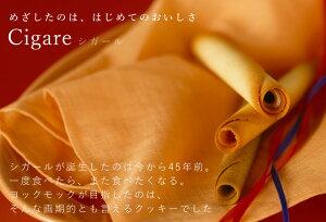 《ヨックモック》YCG-Fシガール(48本入り)☆送料無料キャンペーン中☆ギフト・ご挨拶におすすめ/YOKUMOKU洋菓子ギフト