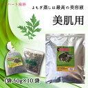【無農薬栽培】よもぎ蒸し材料-美肌用【50g×10袋】(10回分)