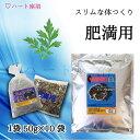 【無農薬栽培】よもぎ蒸し材料 -肥満用【50g×10袋】(10回分)