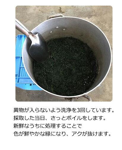 プレミアム新芽よもぎ粉末50g国産無農薬送料無料よもぎ茶ヨモギ茶青汁パウダーノンカフェインクロロフィル