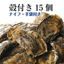 【牡蠣 殻付き 広島産 15個】 広島牡蠣生産者米田海産が育てた殻付き牡蠣 生牡蠣 加熱用