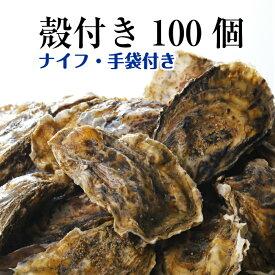 【牡蠣 殻付き 広島産 100個】 広島牡蠣生産者米田海産が育てた殻付き牡蠣 生牡蠣 加熱用 一斗缶相当です(発泡箱入り)