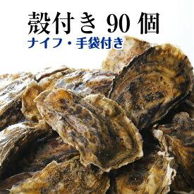 【牡蠣 殻付き 広島産 90個】 広島牡蠣生産者米田海産が育てた殻付き牡蠣 生牡蠣 加熱用 一斗缶相当です(発泡箱入り)