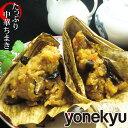 たっぷり 中華ちまき 国産もち米使用 ちまき 粽 おにぎり 竹の皮 こどもの日 端午の節...