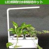 LED照明付水耕栽培キット