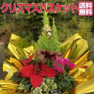 クリスマスバスケット【送料無料】