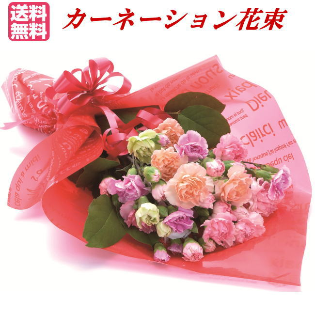【母の日ギフト】カーネーション花束【ギフト包装】【RCP】