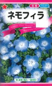 【トーホク】ネモフィラ(0.6ml)【耐寒性一年草】[秋まき]