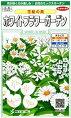 ホワイトフラワーガーデン〜花絵の具