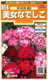 【ナデシコ】美女なでしこ(切り花用混合)【サカタのタネ】(0.5ml)【耐寒性1年草】[秋まき]907411