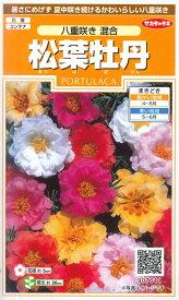 【松葉牡丹】八重咲き 混合【サカタのタネ】(0.1ml)マツバボタン[春まき]一年草907611