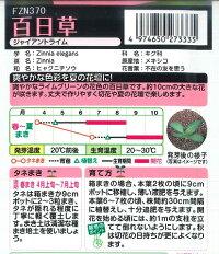 【百日草(ジニア)】ジャイアントライム【タキイ種苗】袋裏