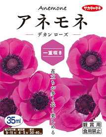 【秋植え球根】(アネモネ一重咲き)デカン ローズ(35ml詰)【サカタのタネ】