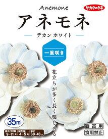 【秋植え球根】(アネモネ一重咲き)デカン ホワイト(35ml詰)【サカタのタネ】