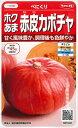 【ホクあま赤皮カボチャ】べにくり【サカタのタネ】(6粒)野菜種[春まき]921032
