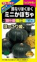 【ミニカボチャ】ほっこり姫 【タキイ種苗】(9粒)野菜種[春まき]